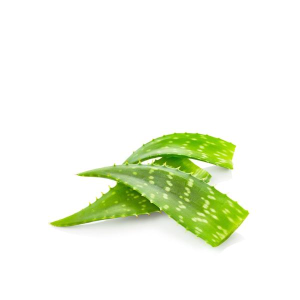 Organic fresh aloe vera 500g